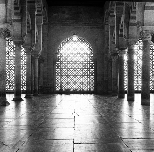 Inside the Grand Mosque #2 Cordoba Spain